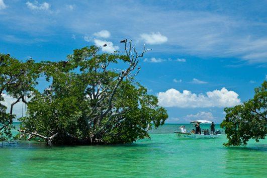 Sian Kaan - Excursiones en la Riviera Maya